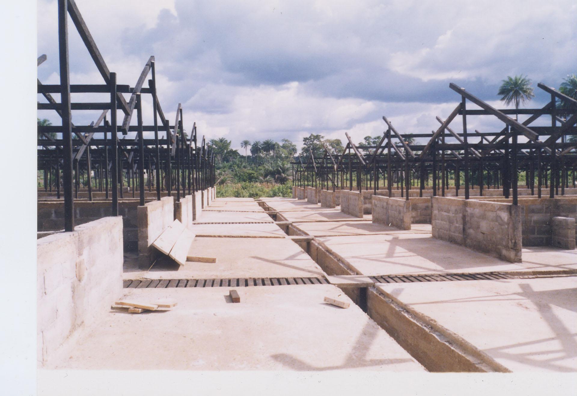 1100-Bangolo-foto12-juliol02-a