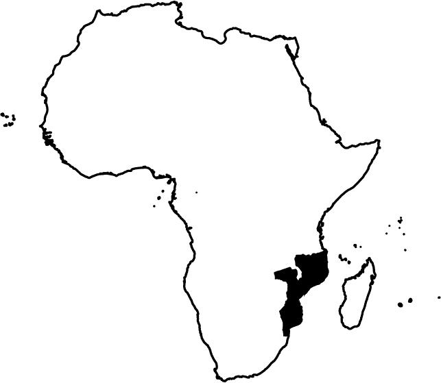 Situació De Moçambic